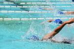 クラスマッチ・水泳大会
